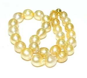 """Stunning Oval 11-15mm 29 pcs Natural Gold Australia South Sea Pearl 18"""" Necklace"""