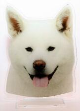 statuette photosculptée 10x15 cm chien akita inu 4 dog hund perro cane