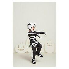T-Rex Toddler Halloween Costume Dinosaur Skeleton 18-24 Months Hyde and Eek