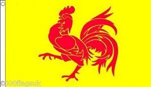 Belgium Wallonia Region 5'x3' Flag