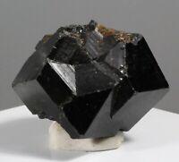 451.75ct Black Mali Garnet Crystal Gem Mineral Andradite Melanite Africa 32
