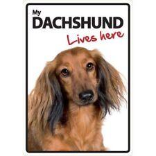 Dachshund Warning Dog Warning Signs
