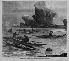 Seal Hunting From Kayaks As Practiced By Norwegians Harpoon Seal Hunt History