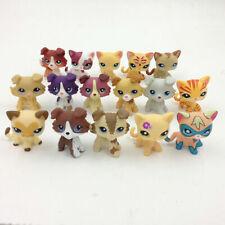 LPS Littlest Pet Shop 28 2219 Cream Collie Dog Short Hair Cat Birthday Random 2X
