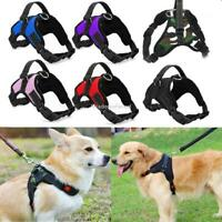 Small Dog Harness Vest No Pull Heavy Duty Adjustable with Handle S/M/L/XL