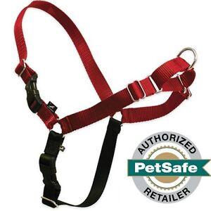 PetSafe/Premier Pet Easy Walk Harness Large Red/Black