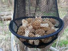 Morel Mushroom Bucket Deluxe Mesh Bag and Harvesting Knife