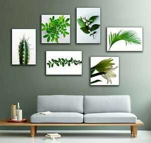 Botanical Set of Canvas Prints Pictures Wall Art Green White Leaves Plants Trees
