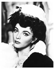 JOAN COLLINS great portrait still - (g053)