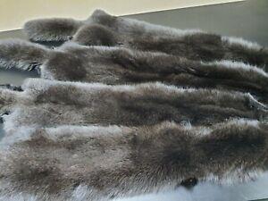 Dark brown fox, sable color fox fur, polar fox, blue fox, real fox, fox, arctic