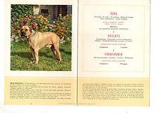 STAMPA PUBBLICITARIA FARMACIA MAESTRETTI 1956 CANE BULL MASTINO