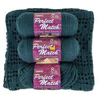 Lot 3 Skeins Caron Perfect Match Evergreen Yarn w/Starter Knit Baby Blanket 7722