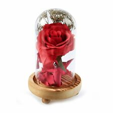 Enchanted Rose Glass Beauty And The Beast Dome Wedding Home Decor Gift