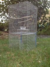 Myna Bird Tower Trap (Indian Myna, Mynah) Delivered all over Australia