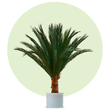Arte palme, artificiales palme, dekopalme, Palme, verdadera hoja de palmera