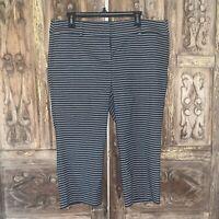 Ann Taylor LOFT Women's Size 14 Petite Pants Cropped Striped Flat Front Stretch