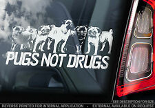 'Pugs Not Drugs' - Car Window Sticker - Chinese Toy Bulldog Dog Sign Funny Gift