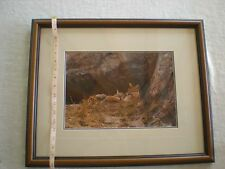 """Thomas Mangelsen """"Mother's Love Mountain Lions"""" Out of Print, Original Signed"""