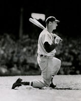 1949 Boston Red Sox TED WILLIAMS Glossy 8x10 Photo Baseball Print Poster