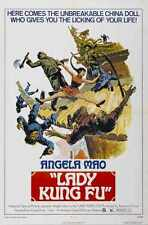 Lady Kung Fu Poster 01 Metal Sign A4 12x8 Aluminium