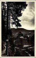 Herrenalb Schwarzwald alte Ansichtskarte 1936 Partie am Gasthaus zur Linde Wald