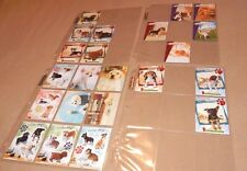 NINTENDOGS TRADING CARD COLLECTION LOT OF 22 PIECES