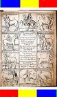 1656 ANTIQUE HORSES VETERINARY Medicine Medical Equine Western Saddle xmas gift