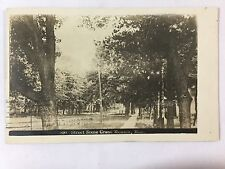1911 Rppc Street Scene Grand Meadow, Mn Real Photo Postcard