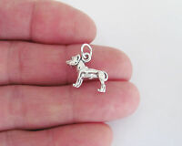 Sterling Silver 3d Pit bull dog charm