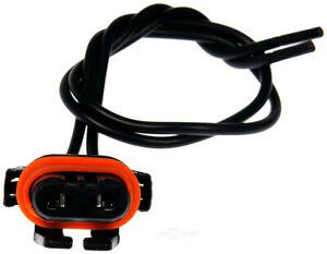 Headlamp Socket Dorman 85812