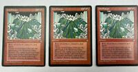 3x JOKULHAUPS ICE AGE SORCERY PLAYSET MTG Magic The Gathering ACTUAL PICTURES