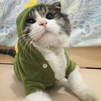 Pet Dinosaur Costume Coat Apparel Clothes Hoodie Puppy Dog Cat Clothing L