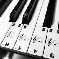 Transparent Piano 61-88 Key Note Keyboard Stickers - Learn Teach to Play Music