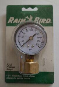 Rain Bird P2A water pressure gauge 77985168018