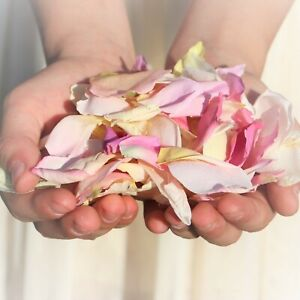 BIODEGRADABLE WEDDING CONFETTI 10LITRES
