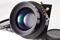 【MINT PL Filter】 Nikon Nikkor W 240mm F5.6 Copal 3 Large Format from JAPAN Y01Y