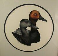 Vintage Original Watercolor Wildlife Painting Redhead Ducks Signed Dated 1985!