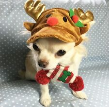 PET XMAS HAT ( ALL SIZES IN STOCK )