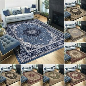 Large Traditional Rugs Living Room Carpet Non Slip Hallway Runner Oriental Rug