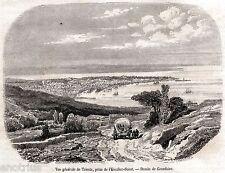 Trieste: Panorama dalla Scala Santa. Tergeste. Stampa Antica + Passepartout.1854