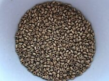 1400pcs x 3mm WOODEN Round Donut SEED Beads - BROWN (very small wood beads)