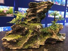 Grey Moss Rock Formation With Bonsai Plants Aquarium Fish Tank Ornament MS953