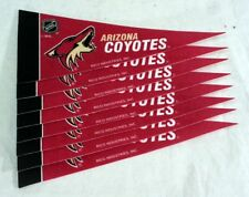 Arizona Coyotes NHL Mini Pennant Set (8)