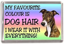 "Greyhound Fridge Magnet ""My Favourite Colour is Dog Hair"""