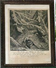 Gravure 18ème Ours Die Höhle einer Boehrin mit Jungen Ridinger