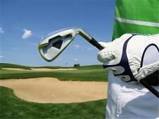 Pro Shop Lessons Golf Clubs Sales BUSINESS PLAN + MARKETING PLAN = 2 PLANS!