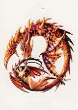 Temporary Tattoo, Dragon Tattoo, AGD234 12-12, Drache mit Drachenfrau