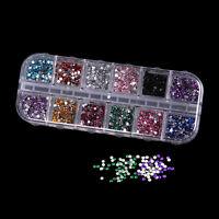 3000 Stück 12 Farben Nagel Strassstein Glitter Strass Deko Nagelkunst DIY