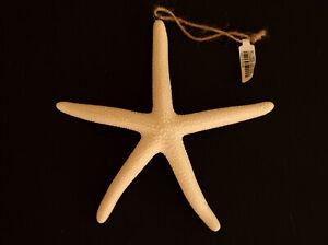 Pottery Barn starfish Christmas ornament ceramic sea life nautical coastal