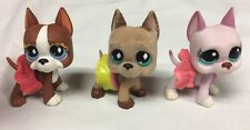 Littlest Pet Shop #636 588 1022 Brown Pink Great Dane Dog Authentic Lot Skirts